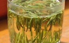 毛尖茶如何泡?常用的毛尖十道茶泡法